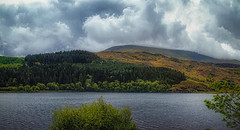 Snowdorama (Мaistora) Tags: lake landscape wales snowdonia lakescape skyscape sky skyline clouds mountain hills green blue grey cloudy weather drama panorama panoramic pictorial picturesque sony alpha ilce skylum luminar sel24f18za zeiss 24mm f18 wideangle sweep lightroom