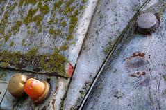 Rust and Bryophyte (FX-1988) Tags: 2cv citroen car bryophyte rusr transportaition old closeup details scrap junk headlight pentax 85mm k7 smc metal hdr sharp green texture sad photography israel fuel
