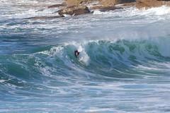 2018.07.15.09.00.44-ESBS red cap seq 12-003 (www.davidmolloyphotography.com) Tags: bodysurf bodysurfing bodysurfer bronte sydney newsouthwales australia surf surfing wave waves