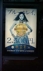 kikukawa_20100511181353