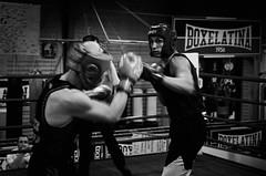 34774 - Hook (Diego Rosato) Tags: boxe pugilato boxelatina boxing ring match incontro nikon d700 2470mm tamron bianconero blackwhite hook gancio pugno punch
