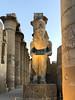 Luxor-68