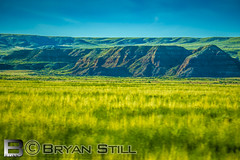Yellowstone 2018-54 (Bryan Still) Tags: b c d e f g h j k l m n o p q r s t u v w x y z 1 2 3 4 5 6 7 8 9 me you us crazy pictures culture hdr hdri lighting fog night sky late boat planes flowers sun moon stars air nature trees clouds mountains artistic painting light sony a6000