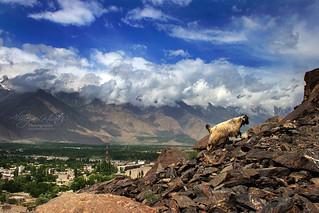 Skardu - Pakistan