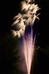Night Flower (jonaskey) Tags: 4rth firework sparks explosion longexposure night
