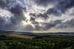 Into the light (ZeGaby) Tags: champagne clouds hdr landscape marne naturephotography pentax2470mm pentaxk1 vignes vignobles vineyards avenayvaldor grandest france fr
