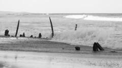 """Buster"" wreck (Mikey Down Under) Tags: australia bw beach blackandwhite breaking buster coast coffs mono northcoast northern nsw shipwreck surf town waves woolgoolga"