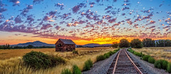 Panoramic Sunrise (http://fineartamerica.com/profiles/robert-bales.ht) Tags: forupload gemcounty haybales idaho land people photo places projects states sunsetorsunrise barn sunrise sunset house farm homestead ranch cattle barnwood fence butte squawbutte mountain idado landscape emmett treasurevalley scenicbiway americaphotography valley idahophotography beautiful sensational spectacular magnificent surreal sublime magical spiritual inspiring canonshooter scenic wow stupendous superb building grass hay trees yellow blue robertbales sky railroad tracks panoramic pano