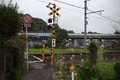 Tako#1 (tetsuo5) Tags: 小田原市 多古 odawara tako epson rd1s voigtlandercolorskopar25mmf40vm explored