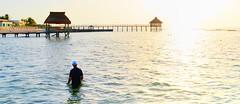 a sunrise swim (Rex Montalban Photography) Tags: mexico mayanriviera sunrise swim vidanta grandmayan hdr