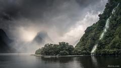 Milford Sound Fjiord, New Zealand (dleiva) Tags: milfordsound fiord newzealand dleiva domingoleiva panorama forest tree mist fog landscape new zealand domingo leiva south island