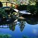 Red Moon Bridge, Kubota Garden