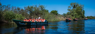 2018 - Romania - Danube Delta - Sfântu Gheorghe - Wetlands