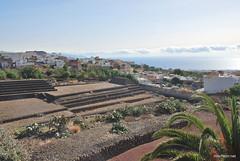 Піраміди в Гуїмар, Тенеріфе, Канари  InterNetri  011