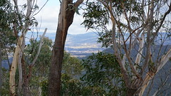 view through the branches (spelio) Tags: mt victoria nsw blue mountains australia winter bushwalk hike