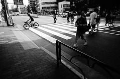 Street (ademilo) Tags: street streetphotography zebracrossing zebra pedestrians pedestrian people tokyo japan