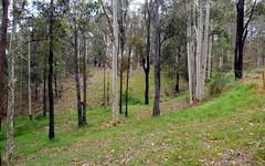 436 Sandy Creek Road, Mount Vincent NSW