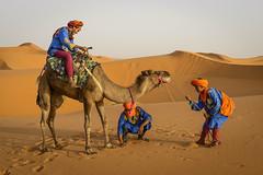 Camel-tamers (Darren Poun) Tags: sahara desert merzouga morocco africa arab arabic nature sunset traveling berber moroccan nikkor58mm nikon d800 d800e f14 portrait camel animal trek trekking
