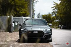 Audi RS5 - Vossen Forged M-X2 Wheels - © Vossen Wheels 2018 - 1016 (VossenWheels) Tags: a4 a4aftermarketforgedwheels a4forgedwheels a4wheels a5 a5aftermarketforgedwheels a5aftermarketwheels a5forgedwheels a5wheels audi audia4 audia4aftermarketforgedwheels audia4aftermarketwheels audia4forgedwheels audia4wheels audia5 audia5aftermarketwheels audia5aftermarketforgedwheels audia5forgedwheels audia5wheels audiaftermarketwheels audiforgedwheels audirs4 audirs4aftermarketforgedwheels audirs4aftermarketwheels audirs4forgedwheels audirs4wheels audirs5 audirs5aftermarketforgedwheels audirs5aftermarketwheels audirs5forgedwheels audirs5wheels audis4aftermarketwheels audis4forgedwheels audis4wheels audis5 audis5aftermarketwheels audis5forgedwheels audis5wheels audiwheels forgedwheels mx mxseries mlx3 rs4 rs4aftermarketforgedwheels rs4aftermarketwheels rs4forgedwheels rs5aftermarketforgedwheels rs5aftermarketwheels rs5forgedwheels rs5wheels s4forgedwheels s4wheels s5 s5aftermarketforgedwheels s5aftermarketwheels s5forgedwheels s5wheels vossenforged vossenforgedwheels vossenwheels rs5 ©vossenwheels2018