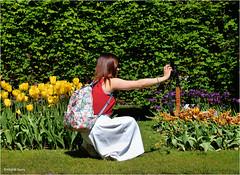 Floral Beauty (Hindrik S) Tags: tulp tulips flowers blommen bloemen selfie girl lady woman vrouw frau frou keukenhof lisse green groen grien grün jardin park tún tuin netherlands dutch nederland zuidholland rucksack rêchsek rugzak yellow giel geel jaune gelb red read camera kamera sonyphotographing sony sonyalpha a57 α57 slta57 sal1650 sony1650mmf28dtssm 2018 outdoor