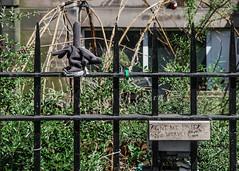 the finger (lowooley.) Tags: edinburgh scotland fence glove finger paidwork