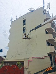 ROA's Okapi (kuremarwanda) Tags: roainrw rwanda streetart mural kuremakurebakwiga kigali okapi okapihotel roaartist roa muhima skyhigh