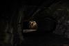 Raw underground (MIKAEL82KARLSSON) Tags: underground underjord ue urbanexplorer urban utforska explore explorer berg bergrum sten skyddsrum shelter light flashlight ficklampa mountain old övergiven övergivet abandoned empty trappa stairway steel stål rör pipe sverige sweden dalarna hc ludvika bergslagen pentax k70 expo long longexpo omkrigetkommer mikael82karlsson