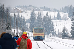train (Ihor Hlukhoi - intui.pro) Tags: carpathians adventure travel hiking tourists top tourism tourist ukraine outdoor hill foothill snow intuipro photographer photo d7100 nikond7100 nikon forest winter road vorokhta show tree landscape sky wood mountain mountainside pine