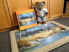 This is more like it! (pefkosmad) Tags: jigsaw puzzle hobby leisure pastime complete used secondhand sunsout moonlitwolves painting art modern mariannecaroselli 1000pieces tedricstudmuffin teddy ted bear animal toy cute cuddly soft stuffed plush fluffy
