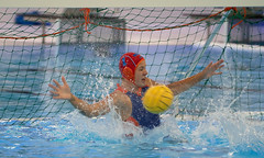 P1394076 (roel.ubels) Tags: spido dutch waterpolo trophy rotterdam sport topsport 2018 knzb holland nederland oranje italië italy usa us hongarije hungary