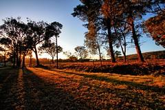 As the sun begins to shine. (Ian Ramsay Photographics) Tags: mittagong newsouthwales australia day dawns sun shine