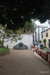 Ікод-де-лос-Вінос, Тенеріфе, Канарські острови  InterNetri  175