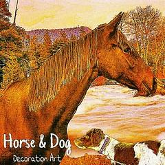 Horse & Dog  Decoration Art   Youtube ヨリ 誰も誰も知らない/加藤登紀子歌と歌詞・曲中西礼 昭和歌謡時代の加藤登紀子さんの歌も良い! https://youtu.be/IZybaoGVEFA (nodasanta) Tags: instagramapp square squareformat iphoneography uploaded:by=instagram kelvin