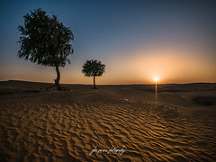 Solitude (oppisan) Tags: panasonicg85 lumix micro four thirds mft desert uae sharjah arid middle east