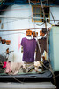The hanged (Janne Herva) Tags: city clothes flowerpot home homeandliving human ihminen kaupunki kaupunkielämä koti kotijaasuminen kukkaruukku purple town urbanlife vaate violetti väri