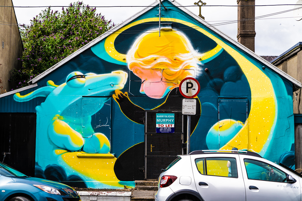 EXAMPLES OF STREET ART [URBAN CULTURE IN WATERFORD CITY]-142262