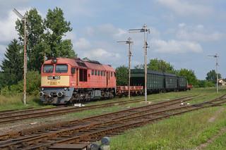 628.163 Vararosnameny