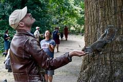 Disney Princess 101 (annemariegrudem) Tags: squirrel feeding man kensington garden london england tree wood