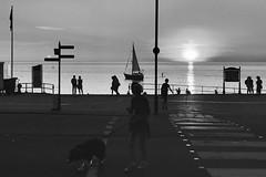 Machlud - Aberystwyth (Rhisiart Hincks) Tags: silhouette silwét cysgodlun ledskeud sgàilriochd sgàildhealbh scáthchruth zilueta aberystwyth cymru coucherdusoleil zonsondergang dulfaoinagréine machlud auringonlasku kuzhheol ilunsenti solpor tramonto sonnenuntergang napnyugta sunset dolfodhanagrèine lhienygreiney zachódsłońca solnedgång blancinegre duagwyn gwennhadu dubhagusgeal dubhagusbán blackandwhite bw zuribeltz blancetnoir blackwhite monochrome unlliw blancoynegro zwartwit sortoghvid μαύροκαιάσπρο feketeésfehér juodairbalta promenade rhodfarmôr bád bàta bag boat cwch txalupa kembre