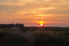 Sunset in Hvide Sande (dennis.kesselboth) Tags: sunset olympus m43