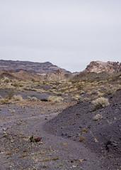 Anglų lietuvių žodynas. Žodis alluvial soil reiškia sąnašų dirvožemio lietuviškai.