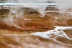 Abstract Iceland - 2 (trochford) Tags: gunnuhver hotsprings geothermal steam steamvents fumaroles water river stream mist lake delta colorful gatewaytoiceland geopark unescoglobalgeopark reykjanes reykjanesgeopark southwesticeland iceland canon canon6d ef24105mmf4lisusm ef24105