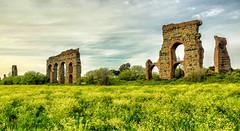 parco degli acquedotti (Japo García) Tags: parco acquedotti roma yelow giallo campo spring fiori field ruinas old antico