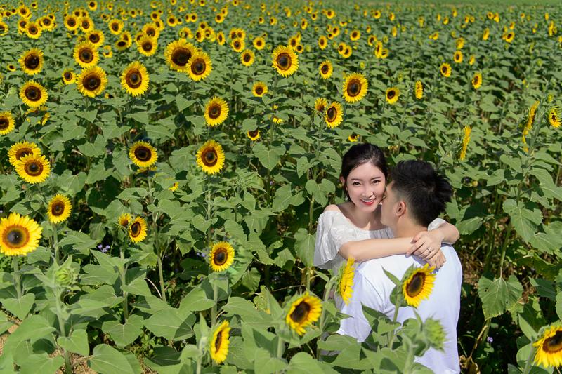 孕婦照,孕婦裝,孕婦寫真,孕婦寫真推薦,向陽農場,逆光寫真,DSC_2402