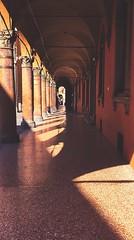 Bologna, Italy. (Pierluigi Mollica) Tags: shadows prospettiva prospettive archi italy travi bologna