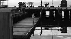 DSC06943 (A Common Courtesy) Tags: a common courtesy wellington auckland new zealand camera photo bw color black white day night monochrome bokeh sony nex 5a nex5a focuspeaking minolta mc pg 50mm 14rokkor fotodiox adapter