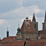 roofs and inhabitants