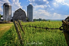 Champlain Farm-1-1531685970486 (Jeremie Doucette) Tags: champlain valley adirondacks adirondack mountains farm silo barn country