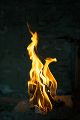 fire dragon (gaston torre .) Tags: dragon fire fuego mitology mitologia light dark d3300 sigma flickr