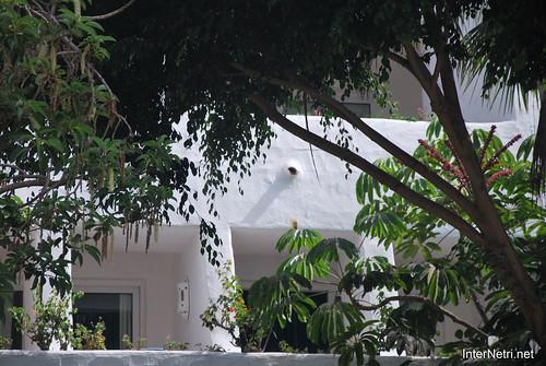 Готель Хардін Тропікаль, Тенеріфе, Канари  InterNetri  305